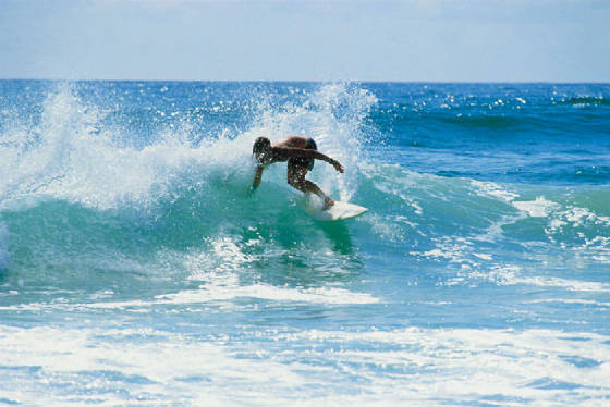 6_surfing-surfers-paradise.jpg